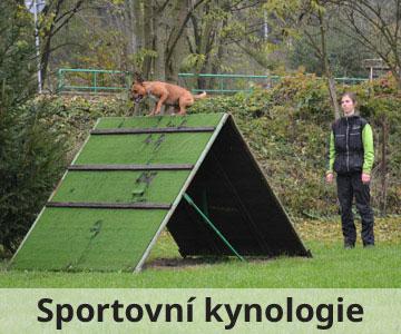 výcvik psů sportovní kynologie